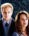 Carlisle and Esme - peter-facinelli photo
