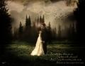 Edward & Bella♥ - twilight-series fan art