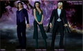 Fairies - sookie-stackhouse-series wallpaper