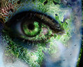 Fantasy eyes - eyes photo