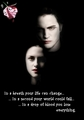 KCullen - twilight-series photo