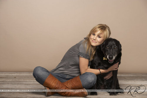 Heroes wallpaper possibly with a flat coated retriever titled Kristen Bell