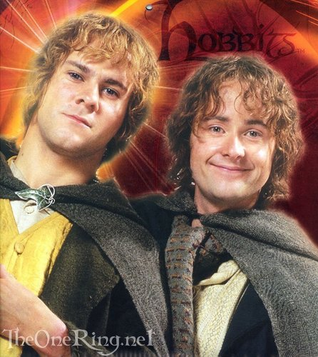 Merry&Pippin