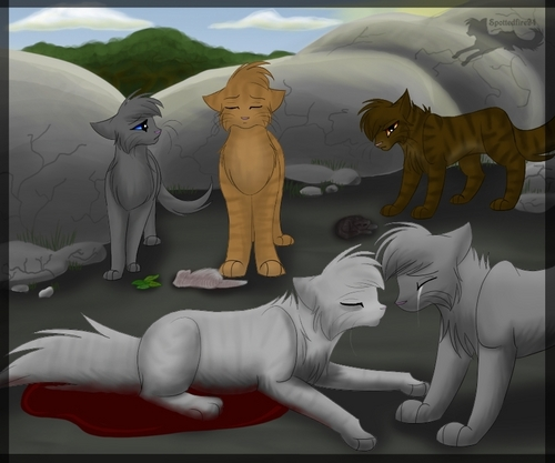 Warrior Cats Dead: RiverClan Images SilverStream's Death HD Wallpaper And