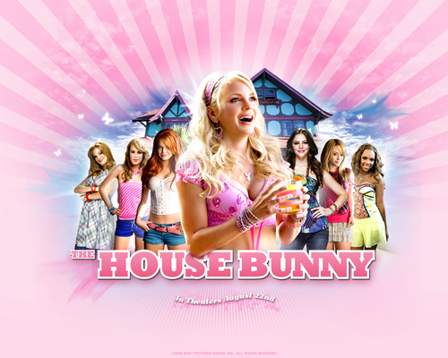 The House Bunny wallpaper titled The House Bunny