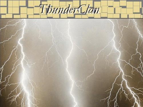 ThunderClan, A Lightning Storm