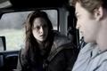 Twilight<3 - twilight-series photo