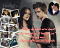 Twlight - twilight-quotes wallpaper