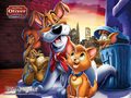 Wallpaper-Oliver & Company