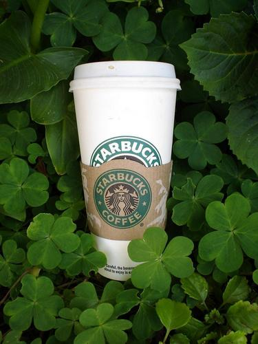 coffee and clover