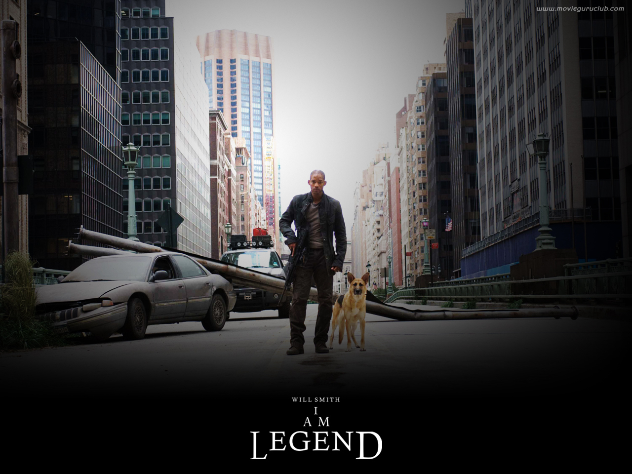 I Am Legend images iamlegend HD wallpaper and background photos