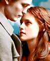 ! ROBSTEN - twilight-series photo
