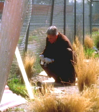 1x17 the truth is out there ncis image 6023023 fanpop