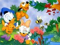 Baby Donald and Baby Daisy Wallpaper - donald-duck wallpaper