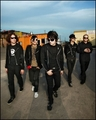 Bam!  - mcrmy photo