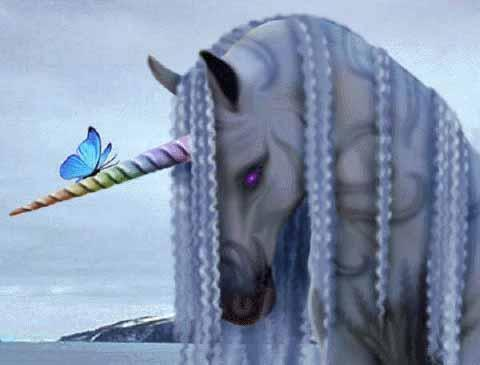 unicorni wallpaper called COOL