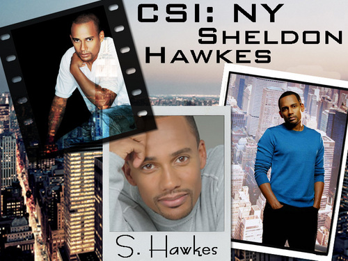 CSI - NY wallpaper