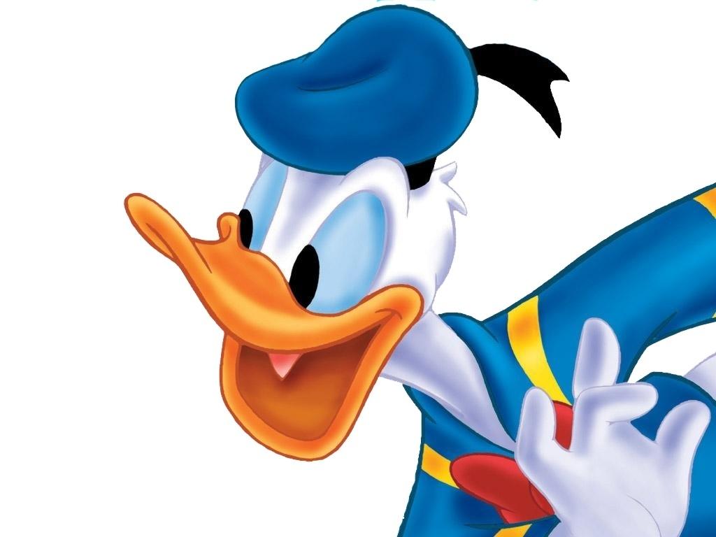 Donald canard fond d'écran