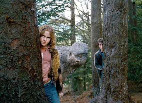해리와 헤르미온느
