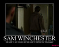 The Winchesters