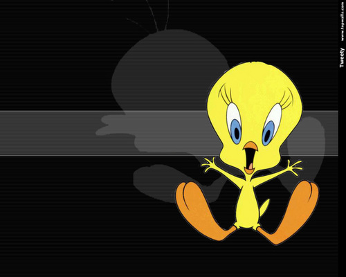 Tweety Wallpaper - tweety-bird Wallpaper