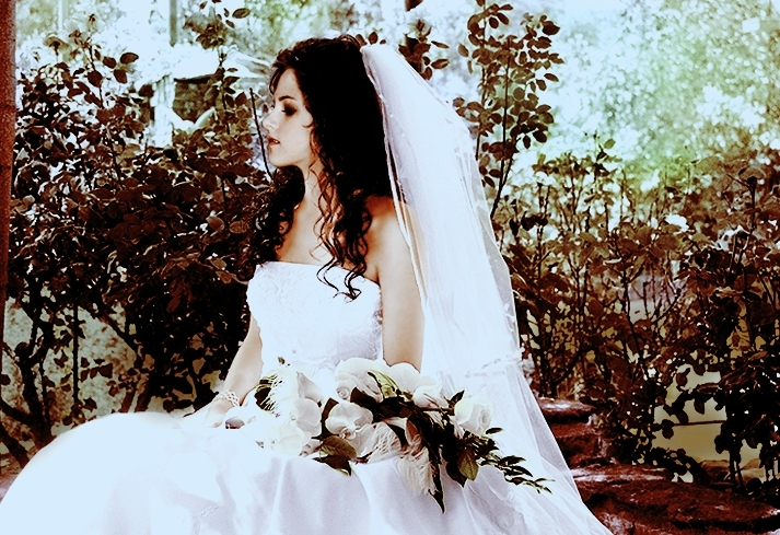 bella's wedding