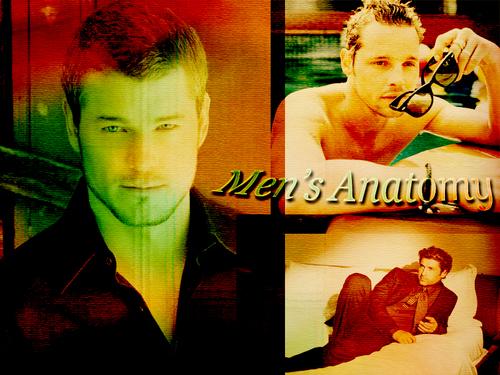 men'n Anatomy