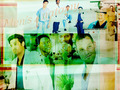 men's anatomy - dr-derek-shepherd wallpaper