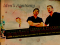 men's anatomy - mark-sloan wallpaper