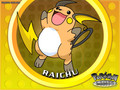 raichu wallpaper - raichu wallpaper