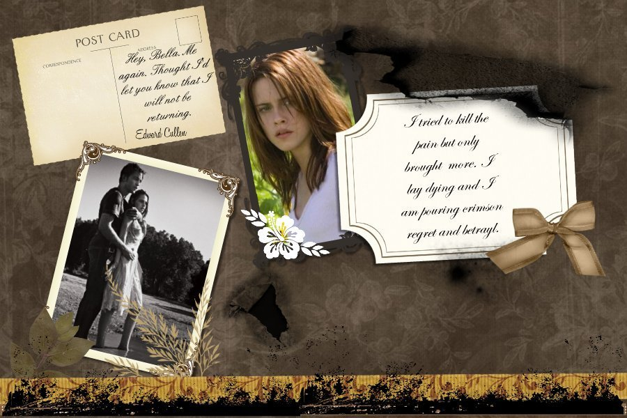 A Look Into Bella's Scrapbook