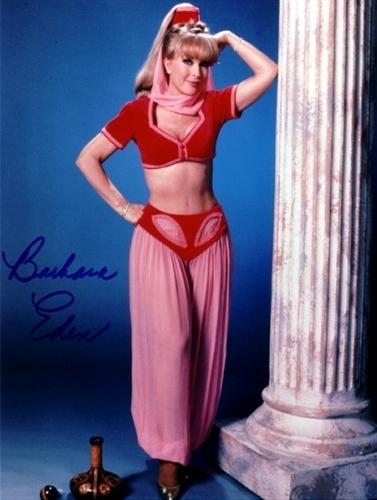 Barbara eden as jeannie idea