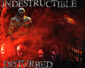 DISTURBED - disturbed photo