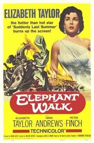 olifant Walk