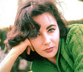Liz Taylor - elizabeth-taylor photo