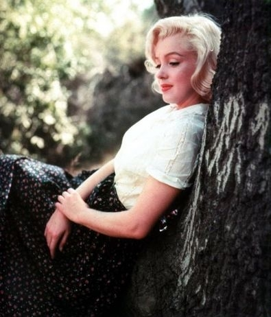 Incredible Filmes Classicos Imagens Marilyn Monroe Wallpaper And Background Hairstyles For Women Draintrainus