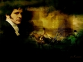 Mr. Fitzwilliam Darcy