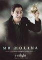 Mr. Molina - twilight-series photo