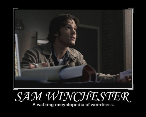 Sam Winchester wallpaper entitled Sam Winchester