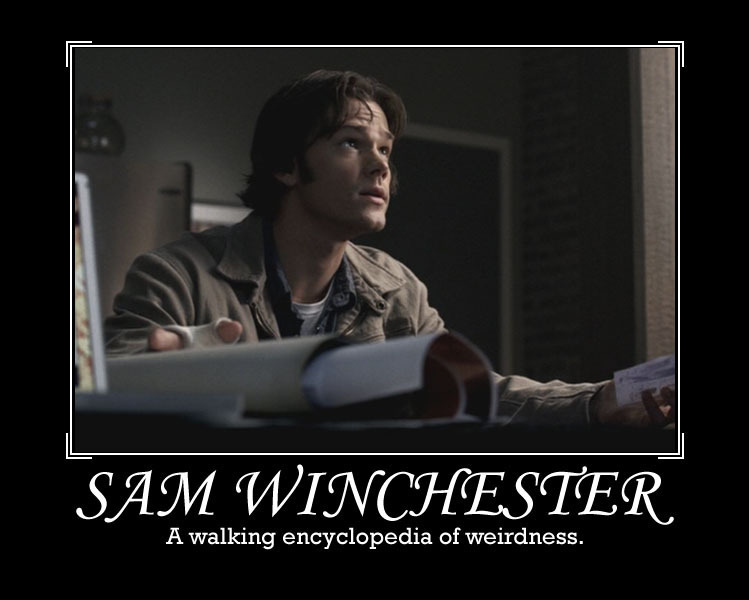 http://images2.fanpop.com/images/photos/6100000/Sam-Winchester-sam-winchester-6112929-749-600.jpg