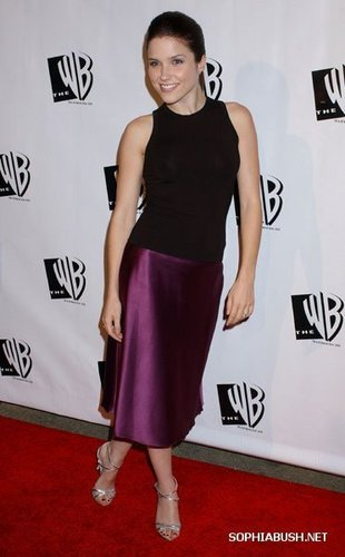 One baum hügel Hintergrund probably with a cocktail dress, a dress, and a chemise entitled Sophia busch and Chad Michael Murray at the The WB 2005 All star, sterne Party