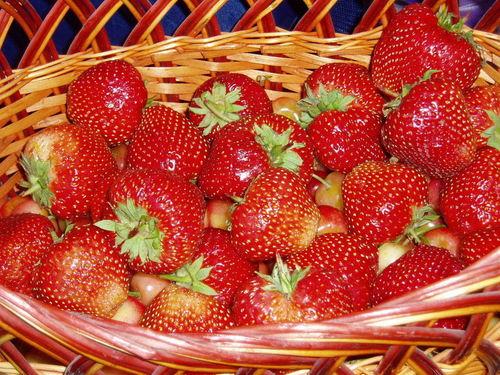 딸기 바탕화면