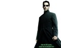 The Matrix Neo Wallpaper - the-matrix wallpaper