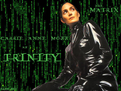 The Matrix Trinity 壁紙