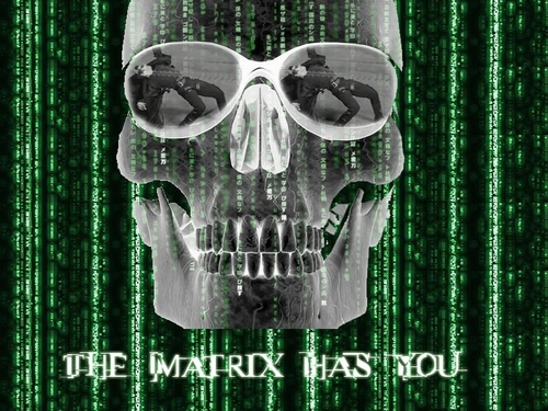 The Matrix 壁紙 titled The Matrix 壁紙