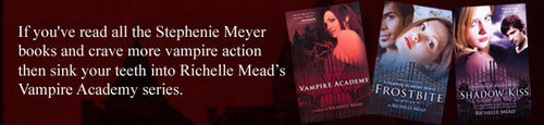 VA Series by Richelle Mead - vampire-academy Photo