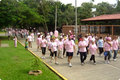 Walks against cancer - breast-cancer-awareness photo