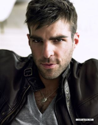 Zach Quinto - zachary-quinto Photo