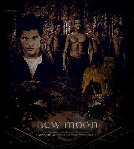 Twilight New Moon  amazoncom