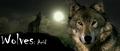 wolfs 4-ever